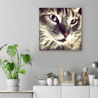 tablou canvas Feline Beauty NWA 016 mockup