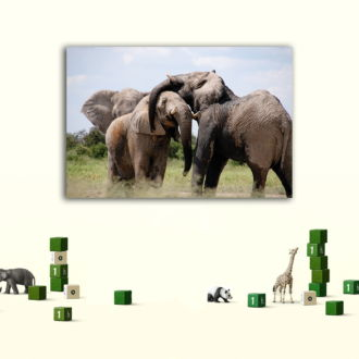 tablou canvas Elephants NWA-018 mockup