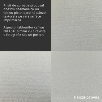 Textura pânză canvas pe care se face imprimarea tabloului