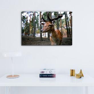tablou canvas Bambi NWA 005 mockup 1