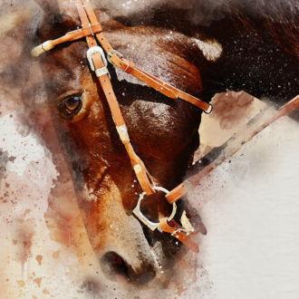tablou canvas Brown horse NWA 024 1