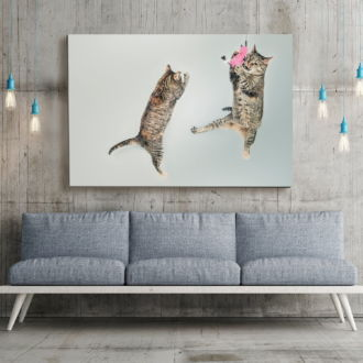 tablou canvas Jumping Cats NWA 011 mockup 1