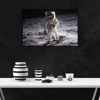 tablou canvas Moon Landing TSP 006 mockup 1