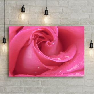tablou canvas Pink Rose NFL 008 mockup 1
