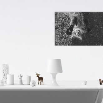 tablou canvas Play with Me NWA 014 mockup 1
