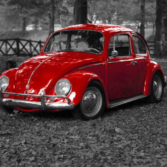 tablou canvas Red Beetle TOR 011 1