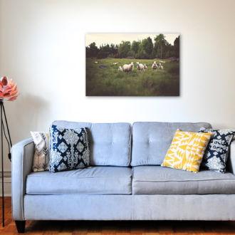 tablou canvas Sheeps and Lambs NWA 006 mockup 1