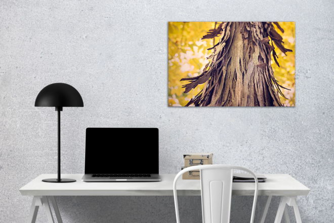 tablou canvas Tree Bark AWO 010 mockup 1