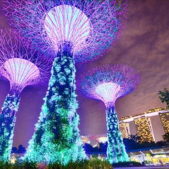 tablou canvas copacii artificiali din singapore UNL 040 1