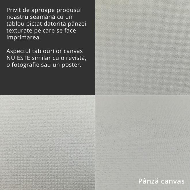 textura canvas tablou printat 1