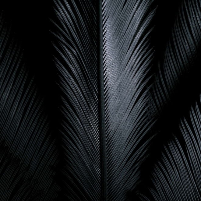 tablou canvas abstract alb negru ABWS 001